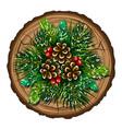 winter bouquet a bouquet coniferous branches vector image vector image