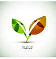 Eco green leaves vector image