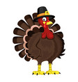 cartoon turkey for thanksgiving day vector image
