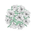 flower lily bouquet isolated floral greeting vector image