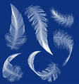 flying white feather vector image vector image