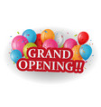 grand opening celebrations background vector image