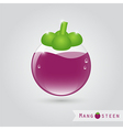 mangosteen fruit juice vector image vector image