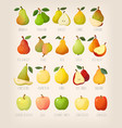 big variety of pears with names vector image vector image