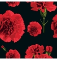 carnations flower vector image vector image