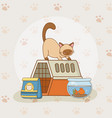 cute little kitty and fish aquarium mascots vector image vector image