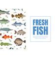 fresh fish banner template seafood market menu vector image