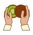 hands holding kiwi vector image