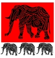ornament elephant vector image