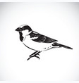 sparrow design on white background bird icon vector image vector image