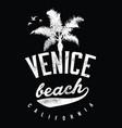 venice beach california vector image vector image
