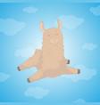 cartoon llama cute lama alpaca card on colorful vector image vector image