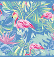flamingo in abstract blue foliage leaves backgroun vector image