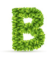 Letter B alphabet of green leaves vector image vector image