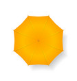 umbrella isolated on white vector image vector image