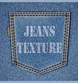 back jeans pocket vector image vector image