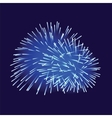 Blue fireworks on dark background vector image