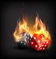 burning dice vector image