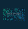 genome colorful outline horizontal vector image vector image