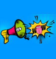 megaphone pop art comic text wow vector image vector image