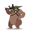 military bear with rifle grizzlies with gun wild