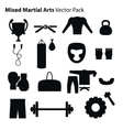 Mix Martial Arts Icons Set vector image vector image