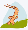 cartoon cute rabbit on grass vector image