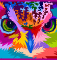 close up of face colorful owl vector image vector image