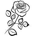 rose black outline vector image vector image