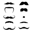 Set of mustaches vector image