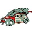 Xmas Tree on Sedan