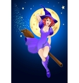 Halloween witch flying on a broom vector image