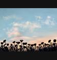 beautiful flower field under summer sunset sky vector image