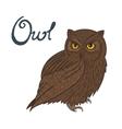 Bird owl vector image
