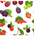 fruits and berries raspberry and strawberry vector image vector image