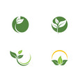 green leaf ecology nature icon vector image vector image