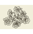 Orchid flower blossom vector image vector image