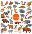 wild mammals animal characters big set vector image vector image