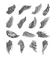 wings graphic vector image vector image