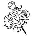 black outline of rose flowers vector image