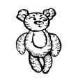 bear character hand-drawn on white background vector image