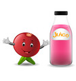 bottle of pomegranate juice with cute pomegranate vector image vector image