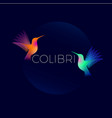 colibri logo vector image