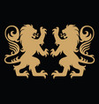 gold lion heraldic logo template vector image
