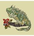 hand drawn iguana vector image