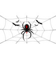 spider black widow cobweb bats red black spider vector image