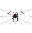 spider black widow cobweb bats red black vector image vector image