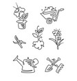 garden flower line art design icons big set vector image