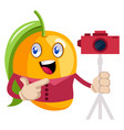 mango with camera on white background vector image vector image