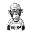 monkeys fast food worker vintage black engraving vector image vector image